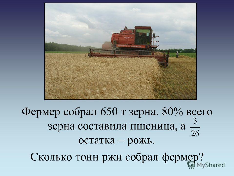 Фермер собрал 650 т зерна. 80% всего зерна составила пшеница, а остатка – рожь. Сколько тонн ржи собрал фермер?
