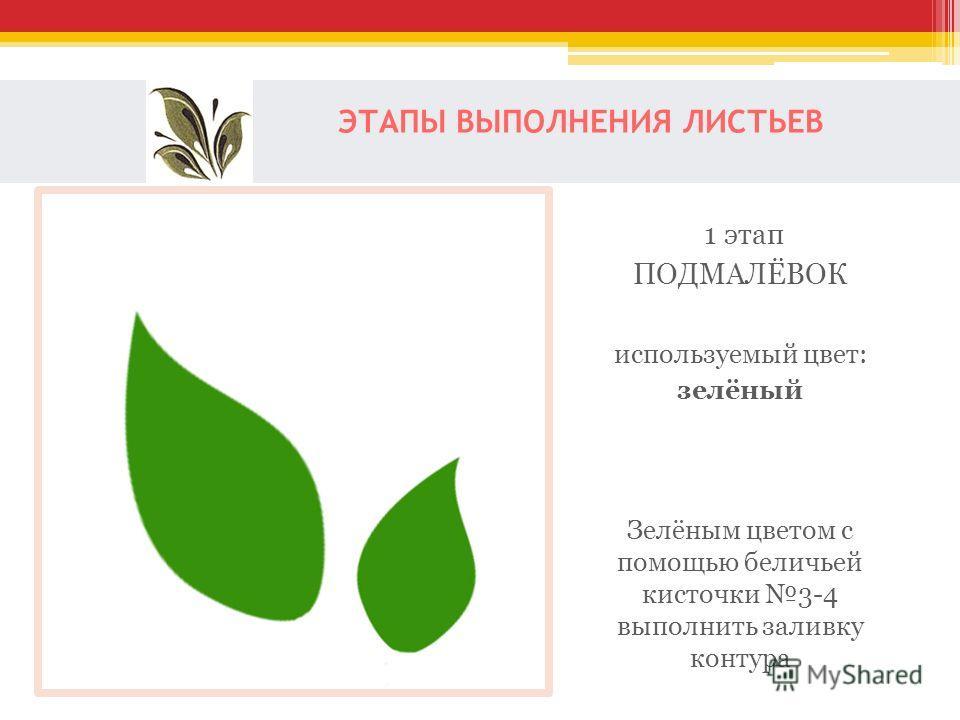 ЭТАПЫ ВЫПОЛНЕНИЯ ЛИСТЬЕВ 1 этап ПОДМАЛЁВОК используемый цвет: зелёный Зелёным цветом с помощью беличьей кисточки 3-4 выполнить заливку контура