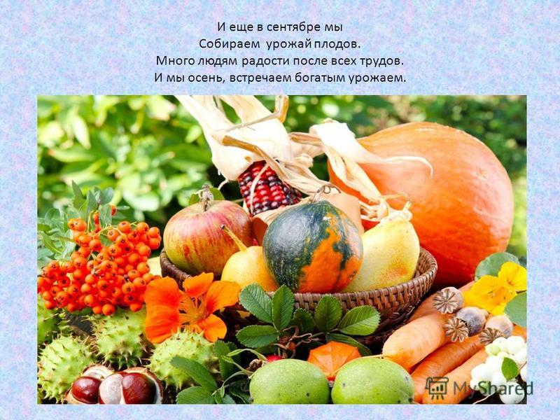 И еще в сентябре мы Собираем урожай плодов. Много людям радости после всех трудов. И мы осень, встречаем богатым урожаем.