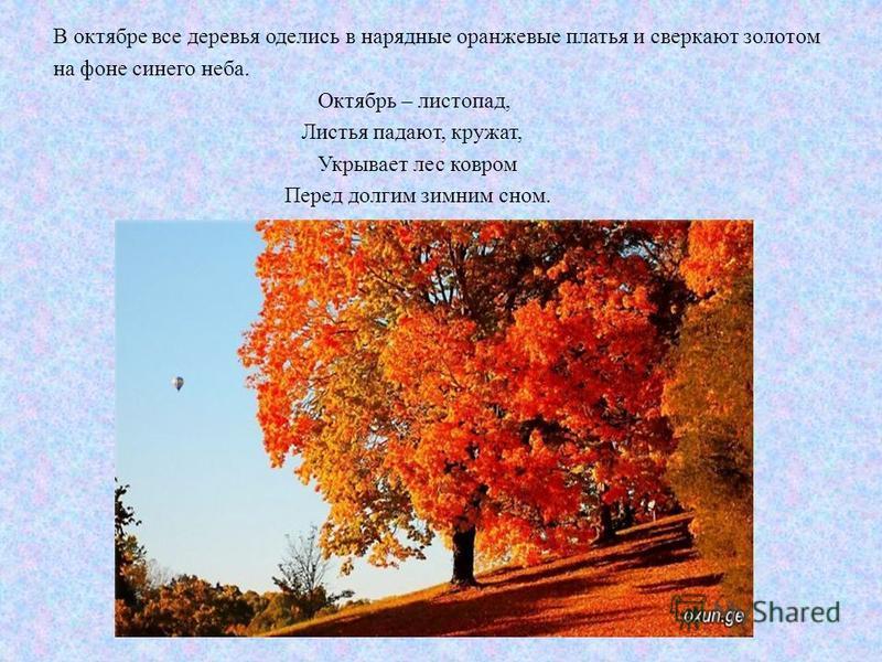 В октябре все деревья оделись в нарядные оранжевые платья и сверкают золотом на фоне синего неба. Октябрь – листопад, Листья падают, кружат, Укрывает лес ковром Перед долгим зимним сном.