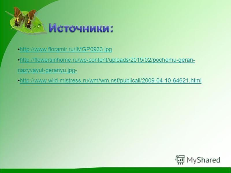 http://www.floramir.ru/IMGP0933. jpg http://flowersinhome.ru/wp-content/uploads/2015/02/pochemu-geran- nazyvayut-geranyu.jpg-http://flowersinhome.ru/wp-content/uploads/2015/02/pochemu-geran- nazyvayut-geranyu.jpg- http://www.wild-mistress.ru/wm/wm.ns