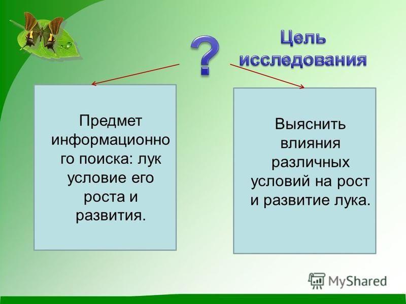 Предмет информационно го поиска: лук условие его роста и развития. Выяснить влияния различных условий на рост и развитие лука.