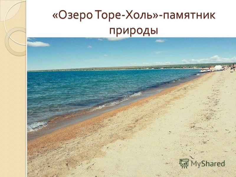 « Озеро Торе - Холь »- памятник природы