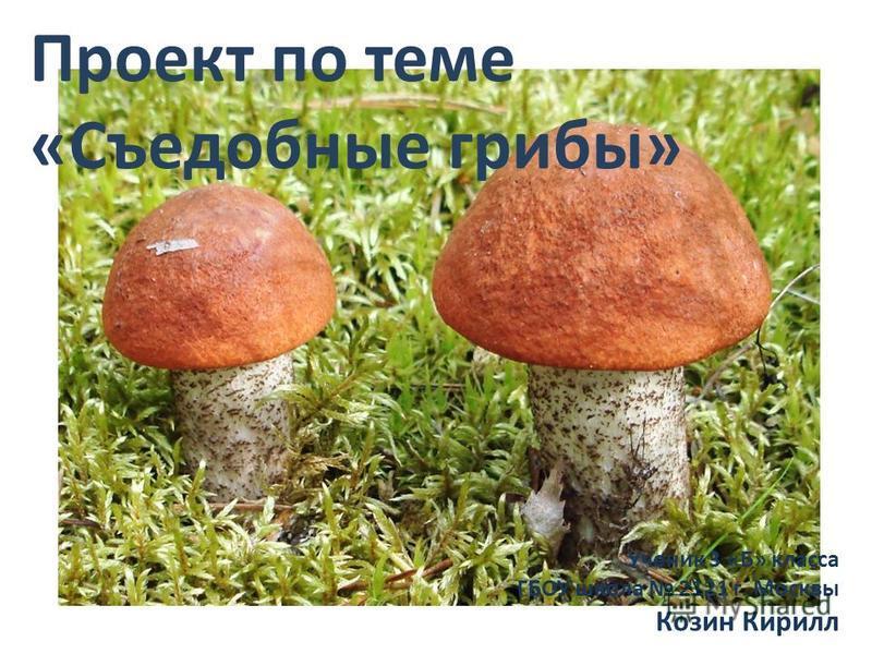 Проект по теме «Съедобные грибы» Ученик 3 «Б» класса ГБОУ школа 2121 г. Москвы Козин Кирилл