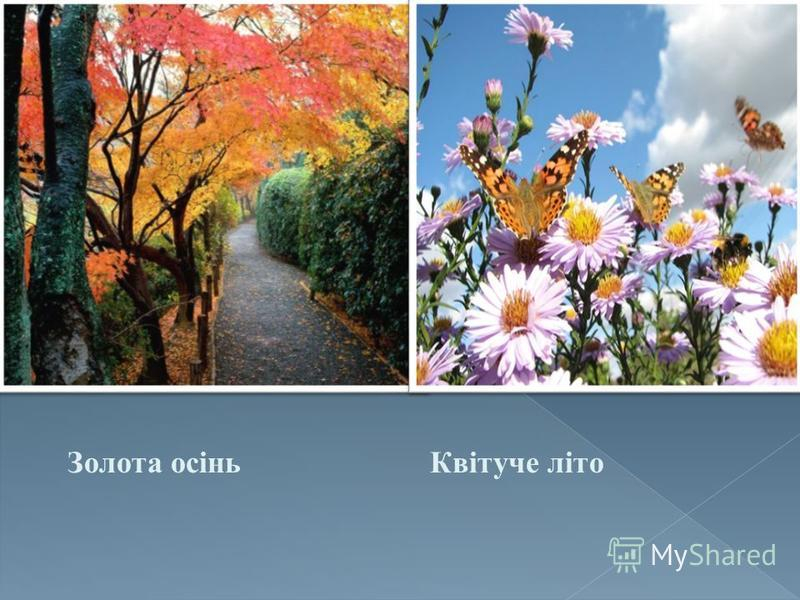 Золота осінь Квітуче літо