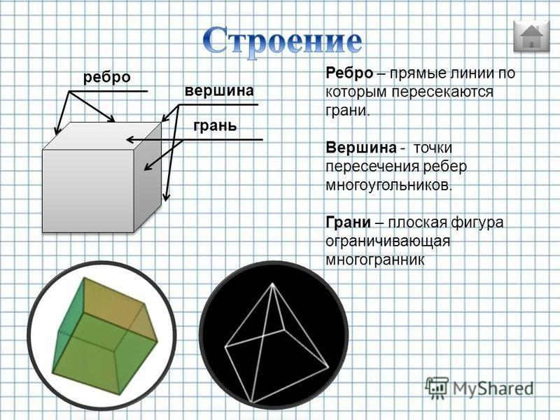 многогранники тела вращения геометрические тела ограниченные со всех сторон плоскостями Ограниченная поверхность которая получается в результате вращения какой либо линии вокруг неподвижной оси строение
