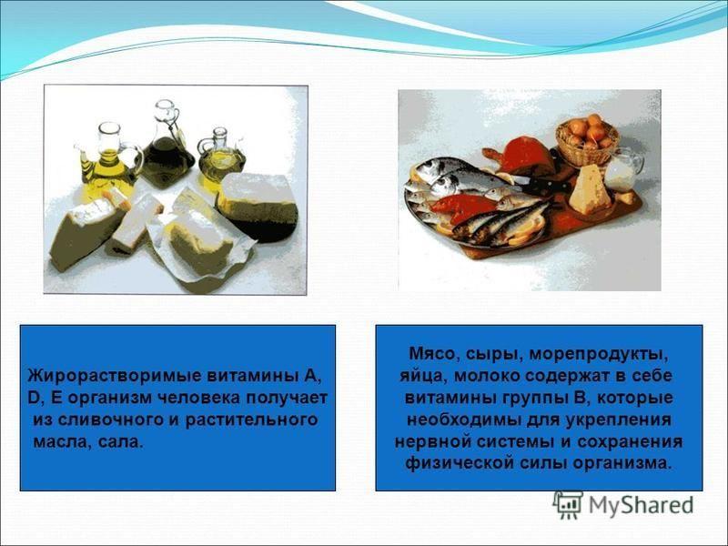 Жирорастворимые витамины А, D, E организм человека получает из сливочного и растительного масла, сала. Мясо, сыры, морепродукты, яйца, молоко содержат в себе витамины группы B, которые необходимы для укрепления нервной системы и сохранения физической