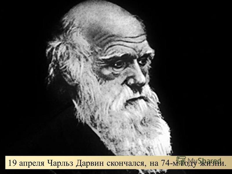19 апреля Чарльз Дарвин скончался, на 74-м году жизни.