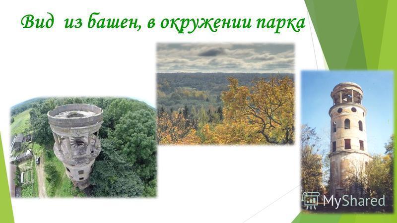 Вид из башен, в окружении парка