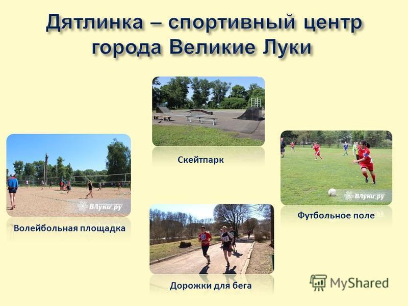 Волейбольная площадка Футбольное поле Дорожки для бега Скейтпарк