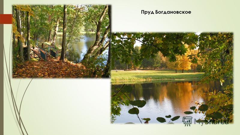 Пруд Богдановское