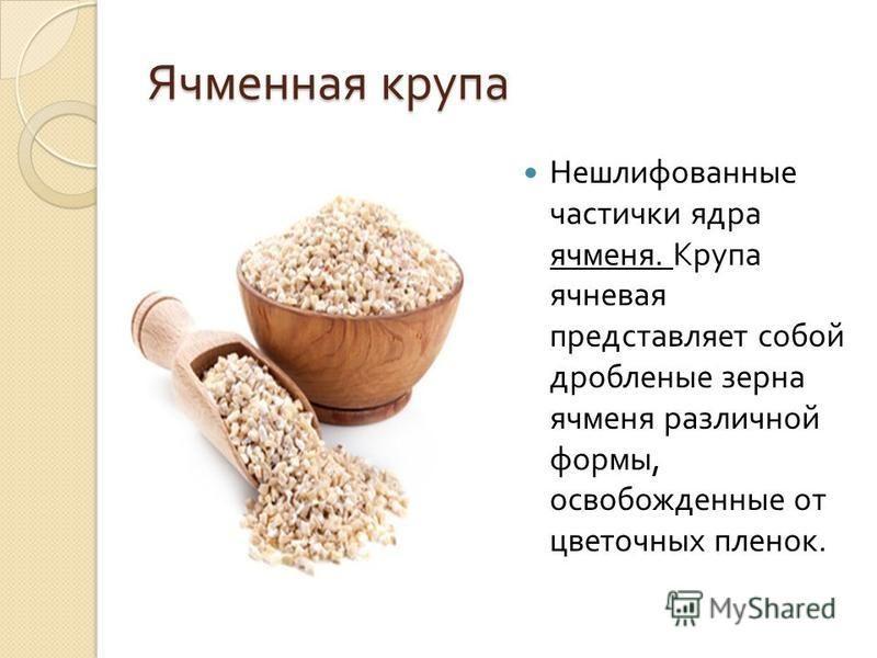 Ячменная крупа Нешлифованные частички ядра ячменя. Крупа ячневая представляет собой дробленые зерна ячменя различной формы, освобожденные от цветочных пленок.