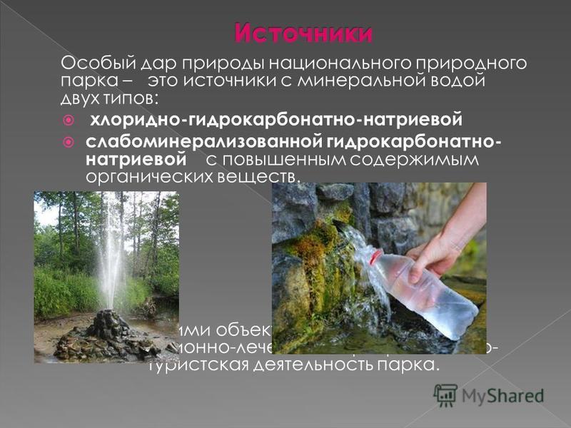 Особый дар природы национального природного парка – это источники с минеральной водой двух типов: хлоридно-гидрокарбонатно-натриевой слабоминерализованной гидрокарбонатно- натриевой с повышенным содержимым органических веществ. С этими объектами тесн