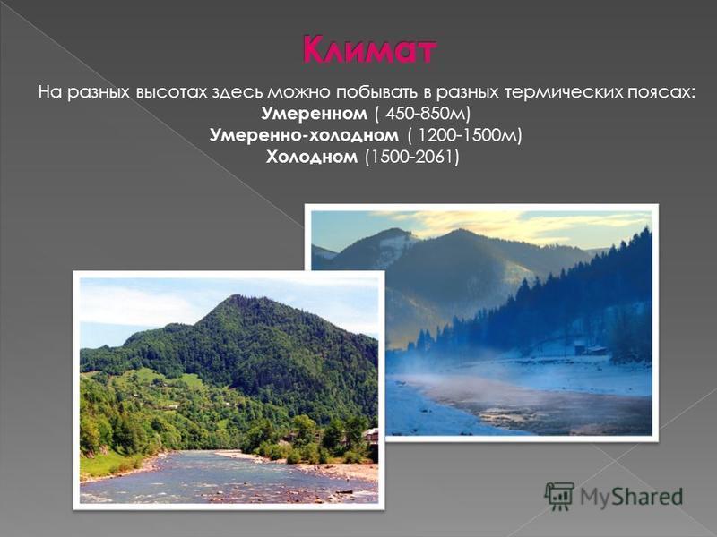 На разных высотах здесь можно побывать в разных термических поясах: Умеренном ( 450-850 м) Умеренно-холодном ( 1200-1500 м) Холодном (1500-2061)