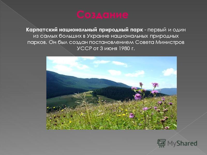 Создание Карпатский национальный природный парк - первый и один из самых больших в Украине национальных природных парков. Он был создан постановлением Совета Министров УССР от 3 июня 1980 г.