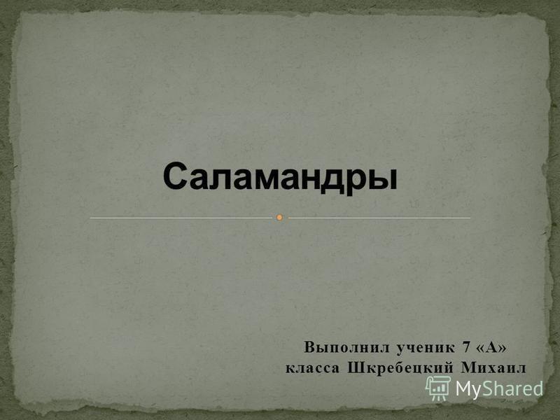 Выполнил ученик 7 «А» класса Шкребецкий Михаил