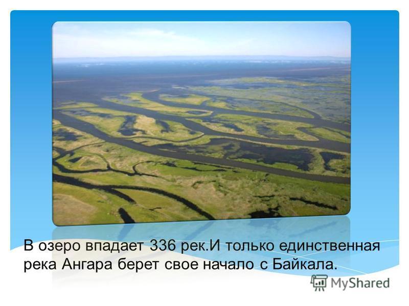 Вода в Байкале настолько прозрачная и чистая, что позволяет разглядеть предметы, что находятся в озере на глубине до 40 м.