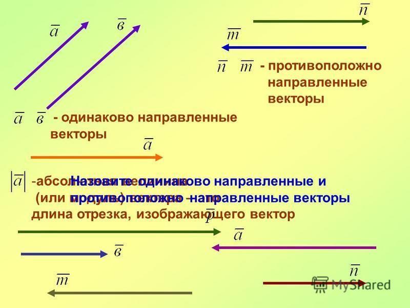 - одинаково направленные векторы - противоположно направленные векторы -абсолютная величина (или модуль) вектора – это длина отрезка, изображающего вектор Назовите одинаково направленные и противоположно направленные векторы