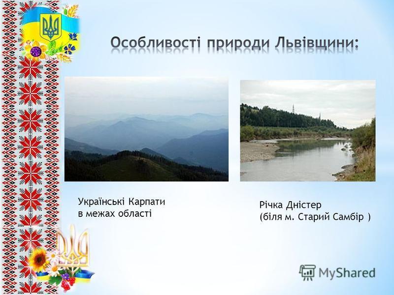 Українські Карпати в межах області Річка Дністер (біля м. Старий Самбір )