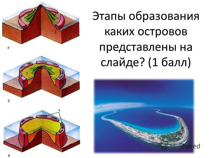 Этапы образования каких островов представлены на слайде? (1 балл)