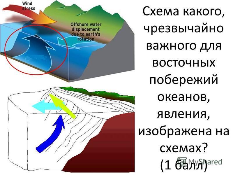 Схема какого, чрезвычайно важного для восточных побережий океанов, явления, изображена на схемах? (1 балл)