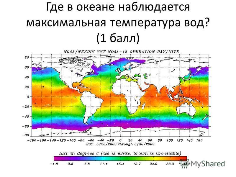 Где в океане наблюдается максимальная температура вод? (1 балл)