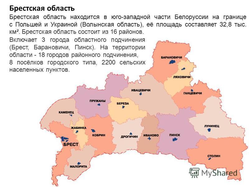 Брестская область Брестская область находится в юго-западной части Белоруссии на границе с Польшей и Украиной (Волынская область), её площадь составляет 32,8 тыс. км². Брестская область состоит из 16 районов. Включает 3 города областного подчинения (