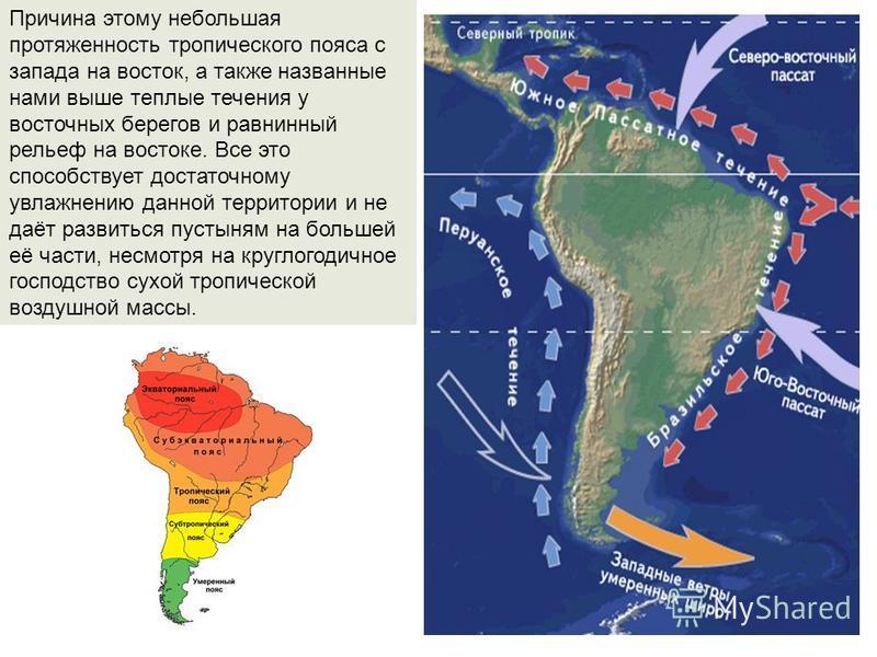 Причина этому небольшая протяженность тропического пояса с запада на восток, а также названные нами выше теплые течения у восточных берегов и равнинный рельеф на востоке. Все это способствует достаточному увлажнению данной территории и не даёт развит