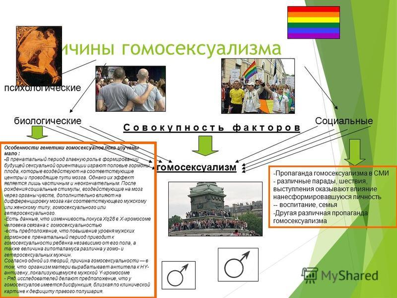 Биологические причины гомосексуализма