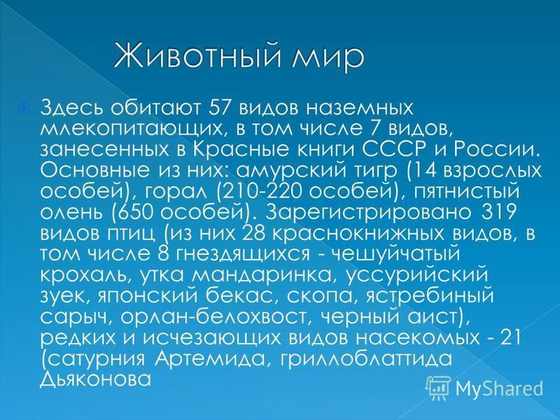 Здесь обитают 57 видов наземных млекопитающих, в том числе 7 видов, занесенных в Красные книги СССР и России. Основные из них: амурский тигр (14 взрослых особей), горал (210-220 особей), пятнистый олень (650 особей). Зарегистрировано 319 видов птиц (