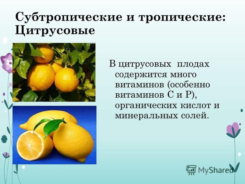 Субтропические и тропические: Цитрусовые В цитрусовых плодах содержится много витаминов (особенно витаминов С и Р), органических кислот и минеральных солей.