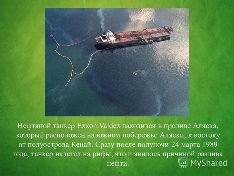 Нефтяной танкер Exxon Valdez находился в проливе Аляска, который расположен на южном побережье Аляски, к востоку от полуострова Кенай. Сразу после полуночи 24 марта 1989 года, танкер налетел на рифы, что и явилось причиной разлива нефти.