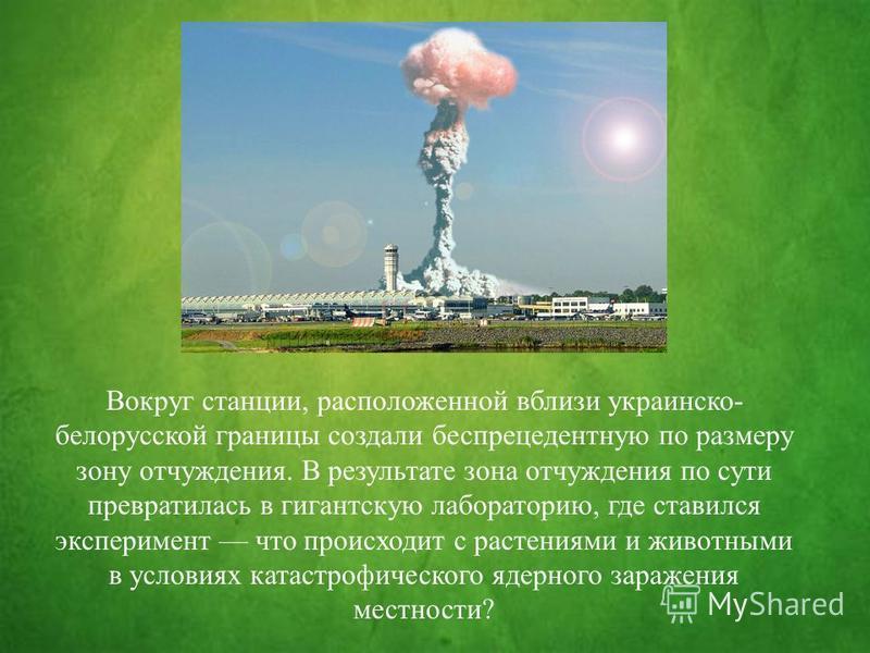 Вокруг станции, расположенной вблизи украинско- белорусской границы создали беспрецедентную по размеру зону отчуждения. В результате зона отчуждения по сути превратилась в гигантскую лабораторию, где ставился эксперимент что происходит с растениями и