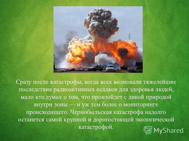 Сразу после катастрофы, когда всех волновали тяжелейшие последствия радиоактивных осадков для здоровья людей, мало кто думал о том, что произойдет с дикой природой внутри зоны и уж тем более о мониторинге происходящего. Чернобыльская катастрофа надол