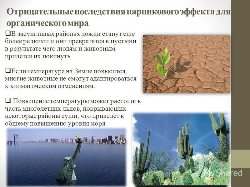 Отрицательные последствия парникового эффекта для органического мира В засушливых районах дожди станут еще более редкими и они превратятся в пустыни в результате чего людям и животным придется их покинуть. Если температура на Земле повысится, многие