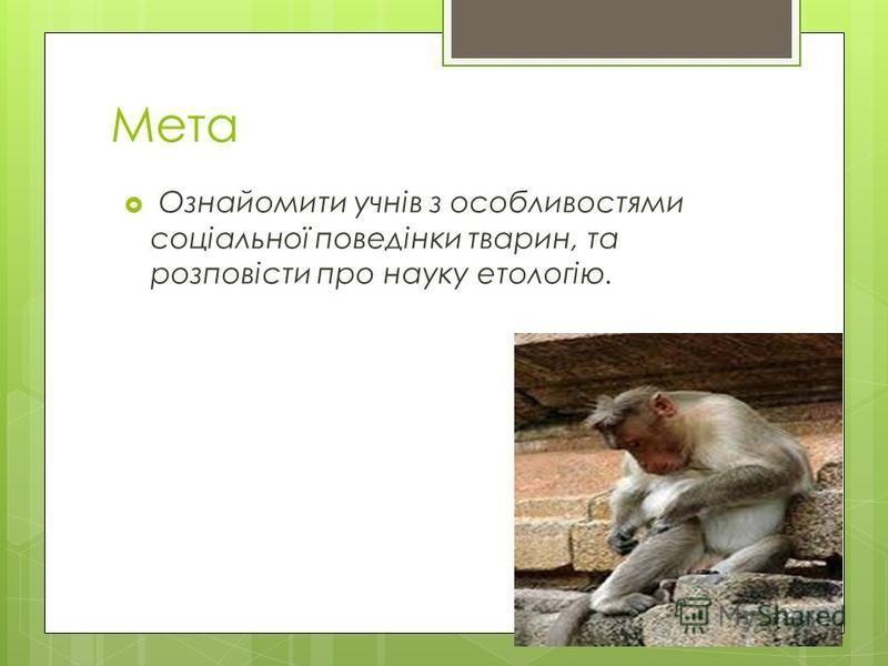 Мета Ознайомити учнів з особливостями соціальної поведінки тварин, та розповісти про науку етологію.