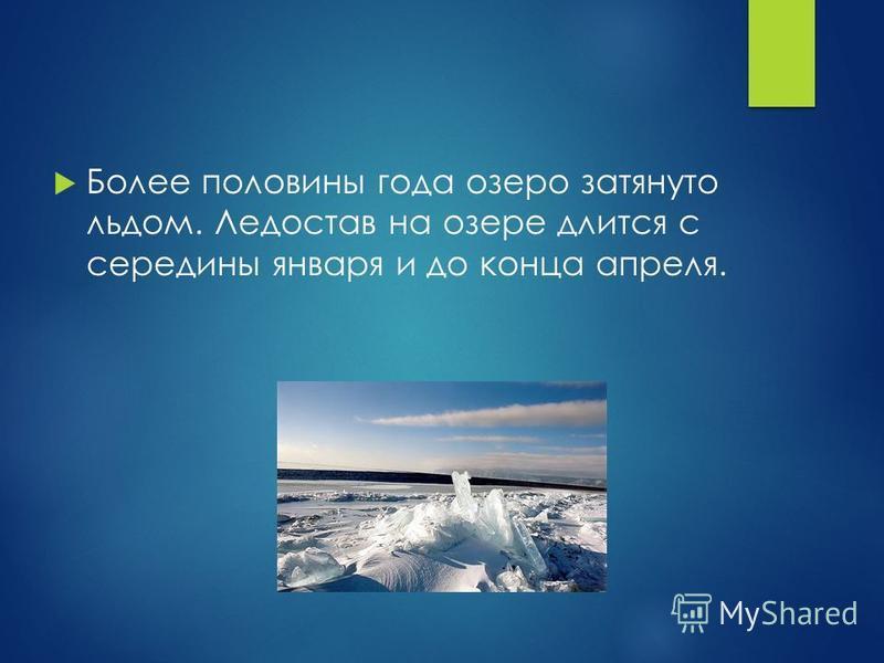 Более половины года озеро затянуто льдом. Ледостав на озере длится с середины января и до конца апреля.