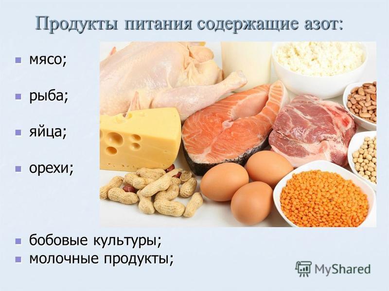 Продукты питания содержащие азот: мясо; мясо; рыба; рыба; яйца; яйца; орехи; орехи; бобовые культуры; бобовые культуры; молочные продукты; молочные продукты;