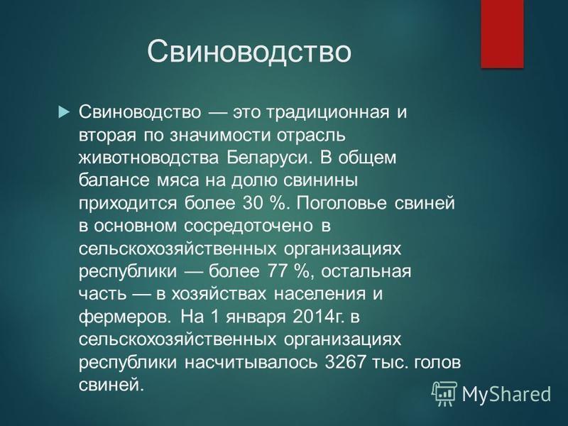 Свиноводство Свиноводство это традиционная и вторая по значимости отрасль животноводства Беларуси. В общем балансе мяса на долю свинины приходится более 30 %. Поголовье свиней в основном сосредоточено в сельскохозяйственных организациях республики бо