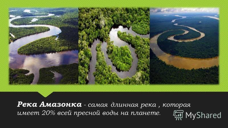 Река Амазонка - самая длинная река, которая имеет 20% всей пресной воды на планете.