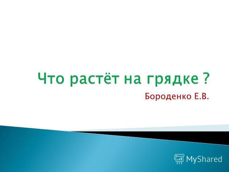 Бороденко Е.В.