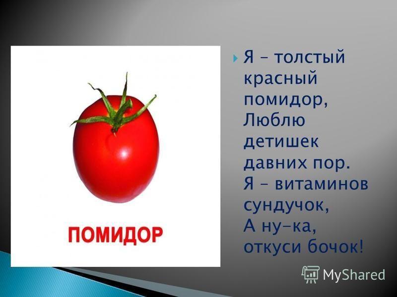 Я – толстый красный помидор, Люблю детишек давних пор. Я – витаминов сундучок, А ну-ка, откуси бочок!
