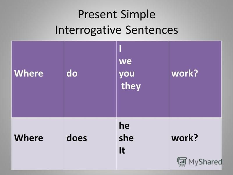 Simple present exercises - questions - Agendaweb