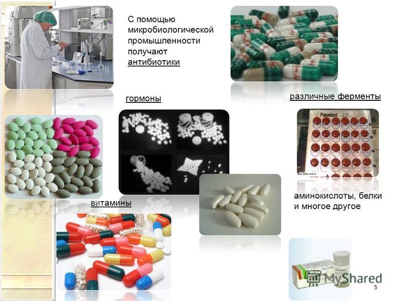 5 С помощью микробиологической промышленности получают антибиотики гормоны различные ферменты витамины аминокислоты, белки и многое другое