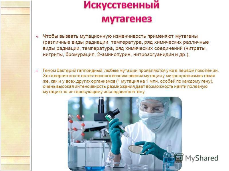 Чтобы вызвать мутационную изменчивость применяют мутагены (различные виды радиации, температура, ряд химических различные виды радиации, температура, ряд химических соединений (нитраты, нитриты, бромурацил, 2-аминопурин, нитрозогуанидин и др.). Геном