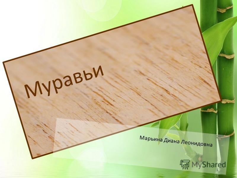 1 Муравьи Марьина Диана Леонидовна