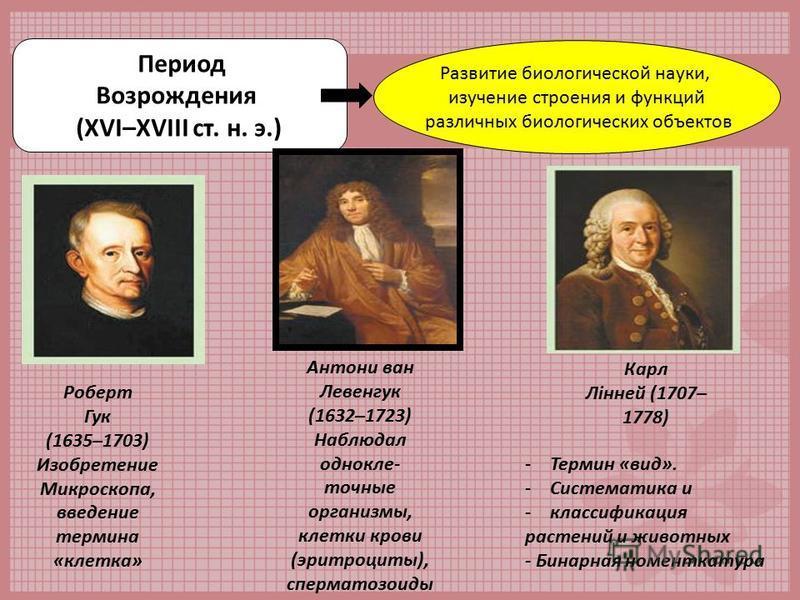 Период Возрождения (ХVІ–XVІІІ ст. н. э.) Развитие биологической науки, изучение строения и функций различных биологических объектов Роберт Гук (1635–1703) Изобретение Микроскопа, введение термина «клетка» Антони ван Левенгук (1632–1723) Наблюдал одно