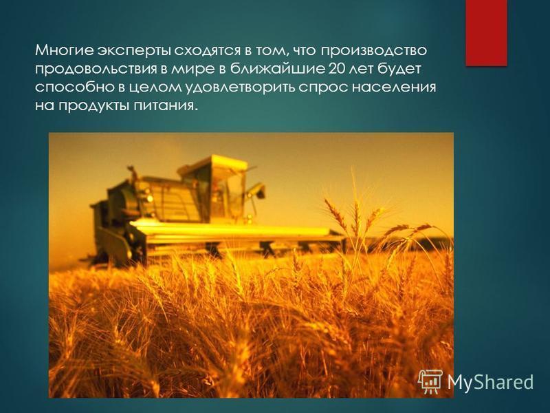 Многие эксперты сходятся в том, что производство продовольствия в мире в ближайшие 20 лет будет способно в целом удовлетворить спрос населения на продукты питания.