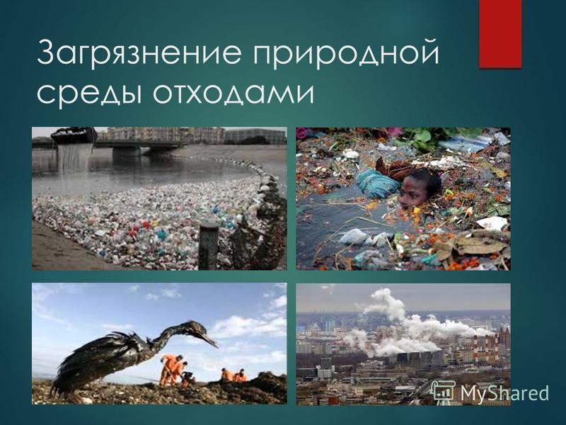 Загрязнение природной среды отходами