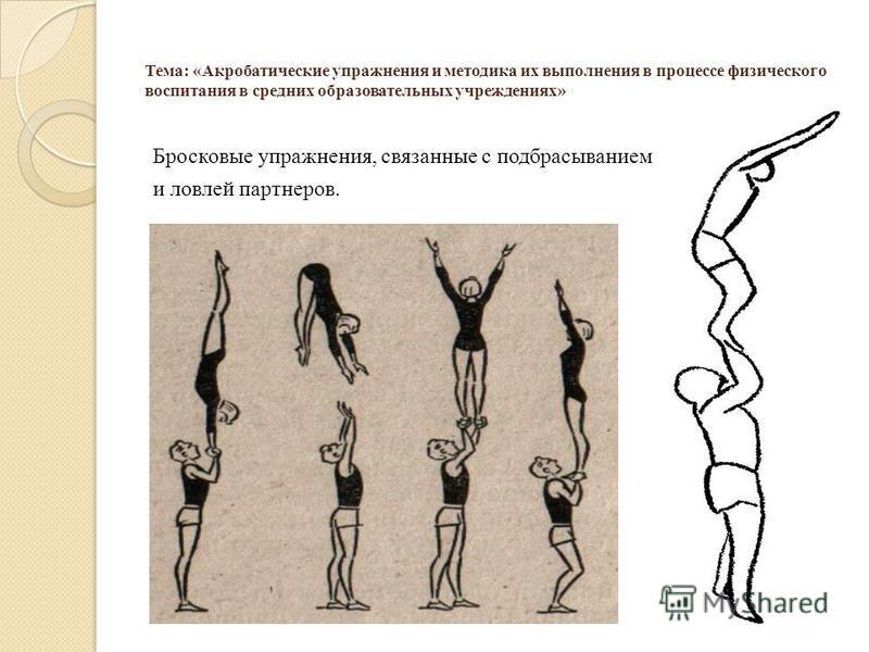 Тема: «Акробатические упражнения и методика их выполнения в процессе физического воспитания в средних образовательных учреждениях» Бросковые упражнения, связанные с подбрасыванием и ловлей партнеров.